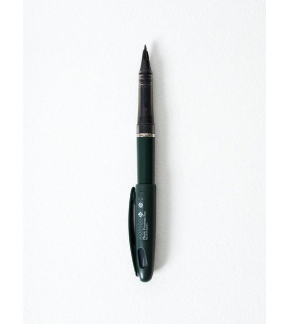 Pen fountain CDT