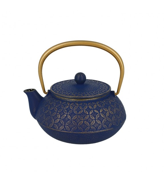 Teapot cast iron Japanese