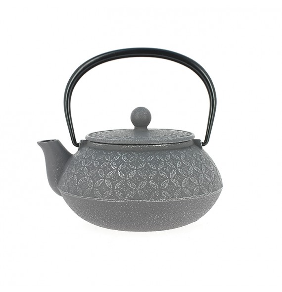 Teapot cast iron Japanese